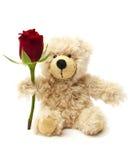 Orso dell'orsacchiotto che tiene una rosa Immagini Stock Libere da Diritti