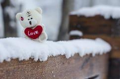 Orso dell'orsacchiotto con il cuore di amore Fotografia Stock