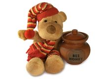 Orso dell'orsacchiotto con il POT del miele Fotografia Stock Libera da Diritti