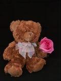 Orso dell'orsacchiotto con Rosa Immagini Stock Libere da Diritti