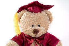Orso dell'orsacchiotto di graduazione Immagini Stock Libere da Diritti