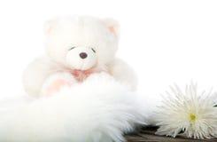 Orso dell'orsacchiotto e fiore bianco Fotografie Stock Libere da Diritti