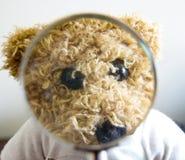 Orso dell'orsacchiotto per i concetti differenti Fotografia Stock