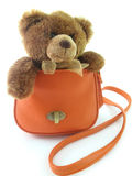 Orso dell'orsacchiotto in un sacchetto Fotografia Stock