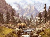 Orso dell'orso grigio nelle montagne rocciose Fotografia Stock