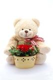 Orso di orsacchiotto rosso delle rose Immagine Stock