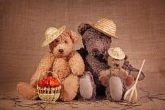 Orso di orsacchiotto tre Immagine Stock