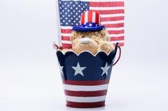 Orso di U.S.A. con il fondo della bandiera e del cilindro Fotografia Stock Libera da Diritti