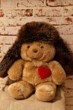 Orso dolce con un cuore e un cappuccio Fotografie Stock Libere da Diritti