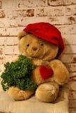Orso dolce con un cuore e un cappuccio Immagine Stock