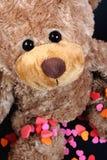 Orso dolce del biglietto di S. Valentino Fotografie Stock