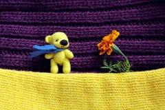 Orso e fiore di giallo del giocattolo Fotografie Stock