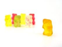 Orso e la sua squadra immagini stock