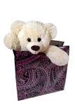 Orso molle del giocattolo in un contenitore di regalo Fotografia Stock