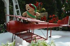 Orso pilota Fotografia Stock Libera da Diritti