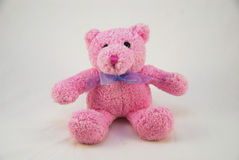 Orso Pinky dell'orsacchiotto Immagine Stock