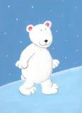 Orso polare bianco