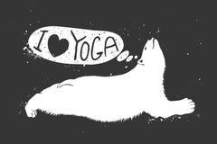 Orso polare che fa yoga Fotografia Stock Libera da Diritti