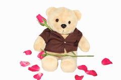 Orso sfocato che tiene una rosa rossa Fotografia Stock