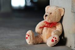 Orso solo dell'orsacchiotto Fotografia Stock Libera da Diritti