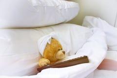 Orso solo a letto Immagine Stock