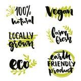 Am Ort gewachsenes Aufkleber- und Vegetarierzeichen Bedecken Sie freundliches Produkt, freies Aufkleberdesign GVO mit Erde Neue A Lizenzfreie Stockfotografie