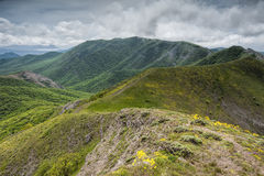 Orta-Syrt在绿色克里米亚山的土坎倾斜 库存照片