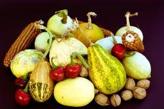 Ortaggi da frutto e cereali dai campi organici Fotografia Stock