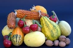 Ortaggi da frutto e cereali dai campi organici Immagine Stock