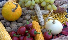Ortaggi da frutto e cereali dai campi organici Fotografia Stock Libera da Diritti