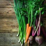 Ortaggi freschi - carote, barbabietole, cipolla verde su fondo di legno Concetto del raccolto della dieta, crudo Fotografie Stock Libere da Diritti
