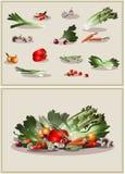 Ortaggi freschi dell'illustrazione icona Fotografia Stock