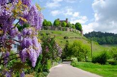 Ortenberg城堡在德国 库存照片