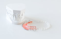 Orthodontic braces and molds Stock Image