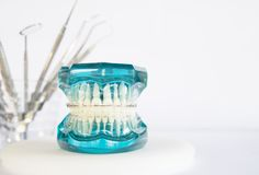 Orthodontic model and dentist tools. Orthodontic model and dentist tool - demonstration teeth model of varities of orthodontic bracket or brace Stock Images