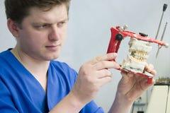 Orthodontist op het werk stock foto's