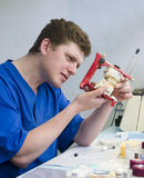 Orthodontist at work. Dental prostetics manufacturing in orthodontic office Royalty Free Stock Photography