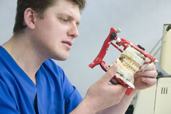 Orthodontist at work. Dental prostetics manufacturing in orthodontic office Stock Image