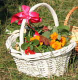 Orthodox basket Stock Images