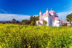 Orthodox Church and Mustard Field near Galilee Sea Stock Image