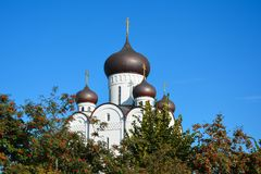 Orthodox Church. Temple of All Saints, Uman, Cherkaska oblast, U. Kraine Royalty Free Stock Image