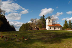 Orthodox church zlatibor. Orthodox church of the village Sirogojno in Zlatibor, located right next to the cemetery at the top of the hill near the ethno village Royalty Free Stock Photography