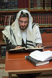 Orthodox Jew learns Torah. Orthodox Jew learns Talmud sitting in the synagogue Royalty Free Stock Photos