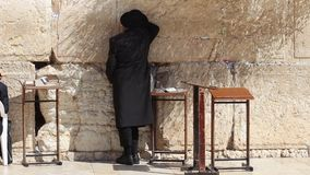 An Orthodox Jew Praying at the Western Wall in Jerusalem Israel stock footage