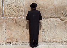 Orthodox Jewish Man prays at the western wall Royalty Free Stock Images