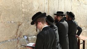 Orthodox Jewish Man prays at the western wall stock video footage