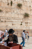 Orthodox Jews pray at Western Wall, Jerusalem Royalty Free Stock Photography