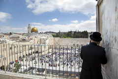 Praying Above the Western Wall Royalty Free Stock Image