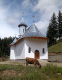 Orthodox temple. In the countryside of the Romanian Moldavia, with cow Royalty Free Stock Images