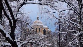 Orthodoxe kathedraalkerk en sneeuwbomen in de winter